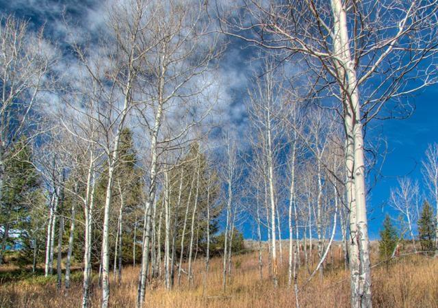 2033  Ousel Falls Road, Big Sky, MT 59716
