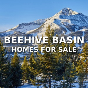 Beehive Basin Homes For Sale