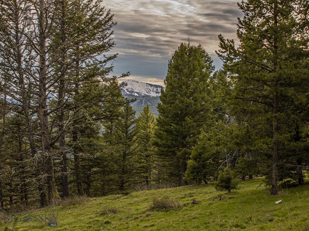 TBD  North Fork Road, Big Sky, MT 59716