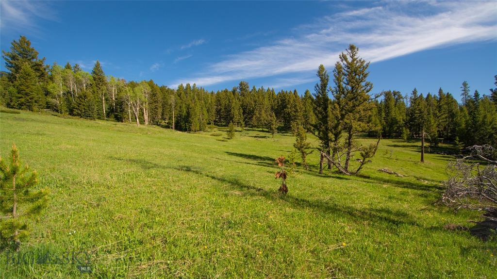 53.42 acres  Appaloosa/Pessl, Big Sky, MT 59716