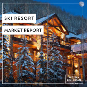 Ski Resort Market Report