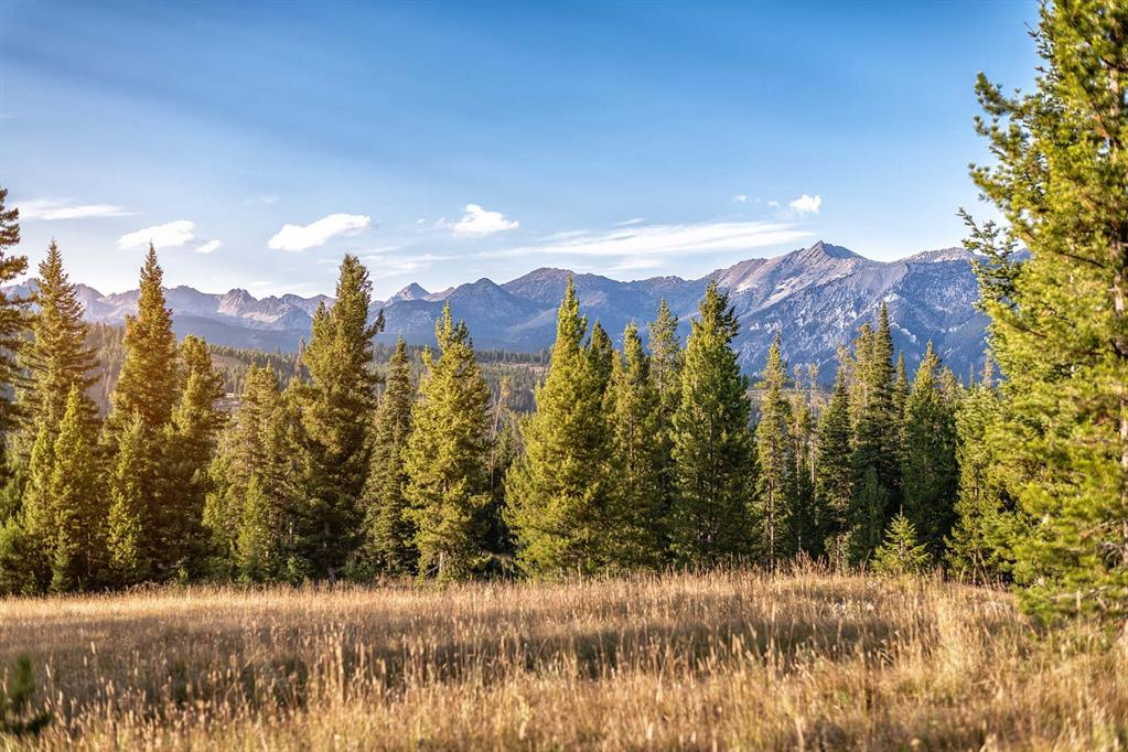 Tract 1, 595  Ousel Falls View Road, Big Sky, MT 59716
