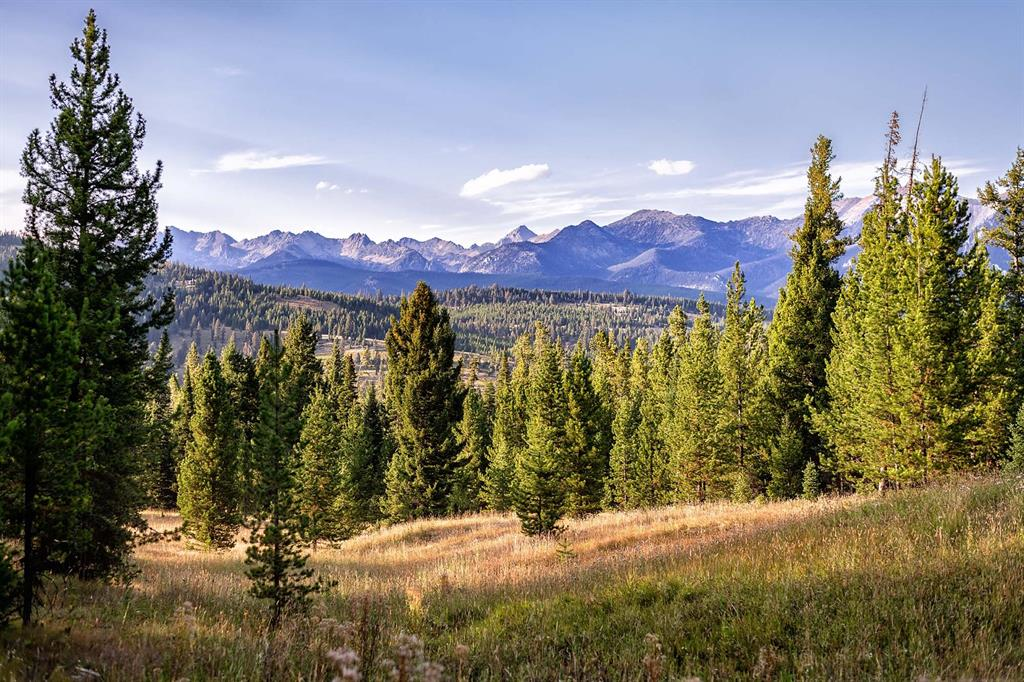Tract 7, 595  Ousel Falls View Road, Big Sky, MT 59716