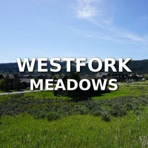 Westfork Meadows